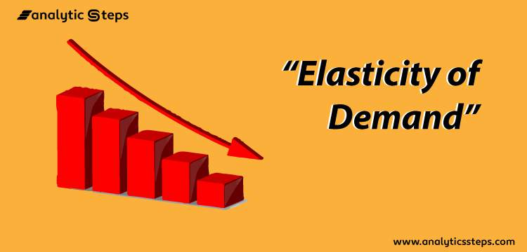 Elasticity of Demand and its Types title banner